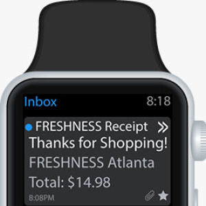 Email Receipt on Watch